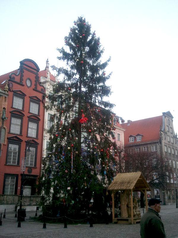 Gdańska choinka.