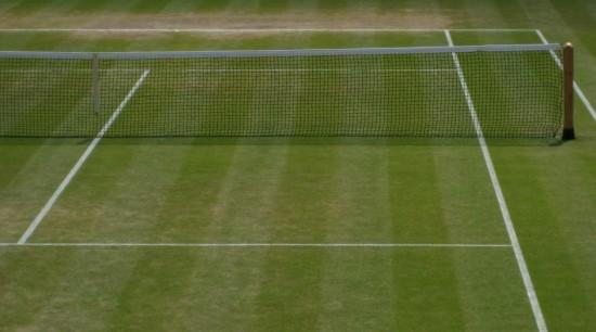 TenisTrawa