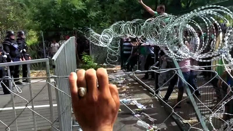 Agresywni uchodźcy zaatakowali policję
